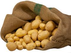 Unsere Kartoffeln stammen aus Vertragsanbau